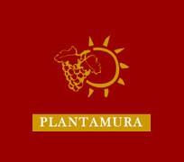 Plantamura